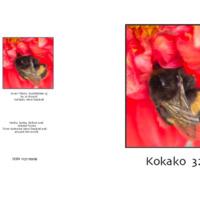 Kokako32_cover.pdf