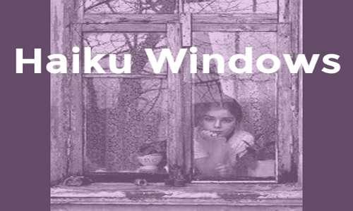 Haiku Windows