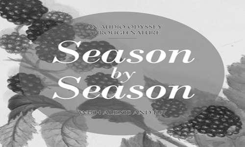 Season By Season