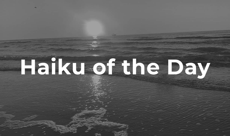Haiku of the Day